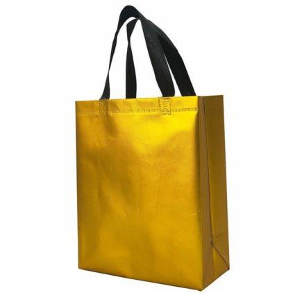 PP Laminated Shopping Non Woven Bag
