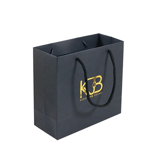 Are You Looking For Paper Carry Bags Manufacturer & Supplier In Delhi ?