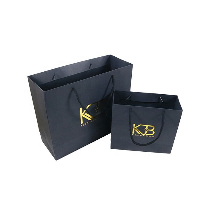 Get Customized Paper Carry Bags Manufacturer & Supplier at Wholesale Price In Delhi.
